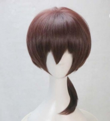 The King's Avatar Cosplay Wig Dark Brown Low Ponytail Cosplay Wig
